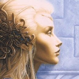 la-trilogie-des-elfes-tome-1-le-crepuscule-des-elfes-52776